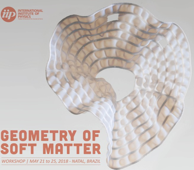 Brazil - geometry of soft matter poster